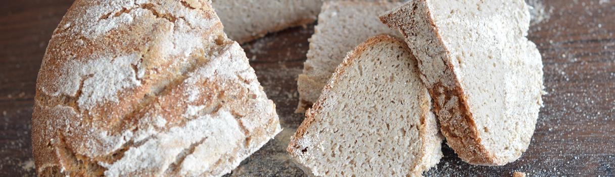 ajdov kruh o kruhu